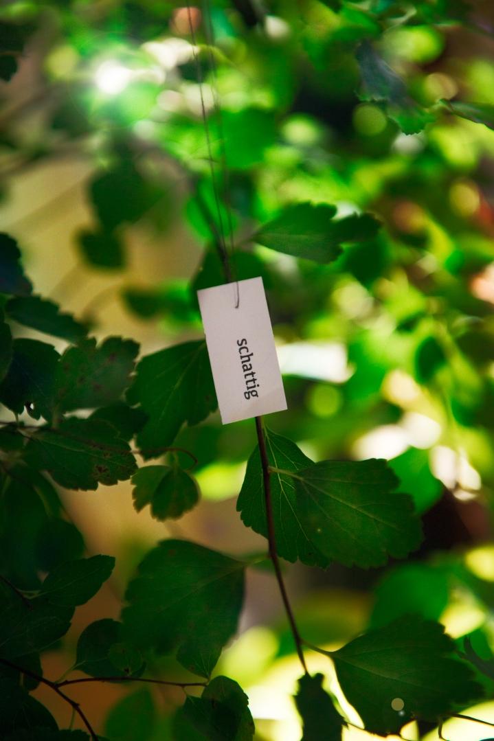 Wild-And-Root-Barkin-Kitchen-Food-Art-Week-Berlin-Photo-by-Carina-Adam--CAR_5008-Bearbeitet